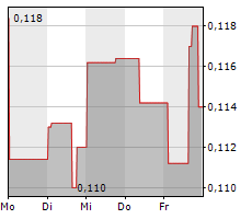 MAPLE GOLD MINES LTD Chart 1 Jahr