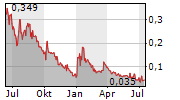 MOUNTAIN VALLEY MD HOLDINGS INC Chart 1 Jahr