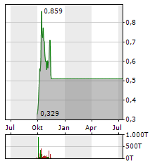 NEVADA COPPER Aktie Chart 1 Jahr