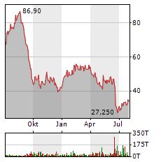 STEICO Aktie Chart 1 Jahr