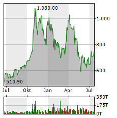 TESLA Aktie Chart 1 Jahr